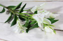 Umelá kytica ĽALIA - biela (v. 80 cm)