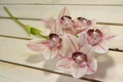 Umelá orchidea - pásikavá (V:52cm) 099