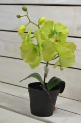 Umelá orchidea v črepníku - zelená (V:30cm) 105