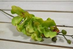 Umelá orchidea - zelená (V:61cm) 057