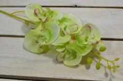 Umelá orchidea - zelená (V:70cm) 075