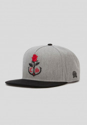 CAYLER SONS Snapback C&S CL Rose Keeper Cap Farba: heather grey/mc,