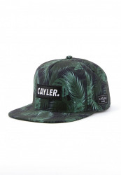 CAYLER SONS Snapback C&S WL Green Jungle Snapback