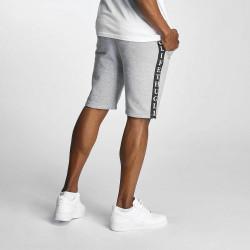 SOUTHPOLE Pánske teplákové kraťasy Thug Life Twostripes Shorts Grey #1