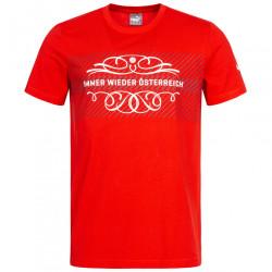Pánske bavlnené tričko PUMA D1786