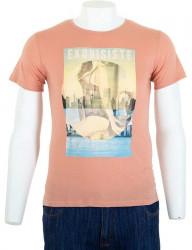 Pánske farebné tričko I8256