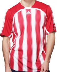 Pánske futbalové tričko Adidas A0528