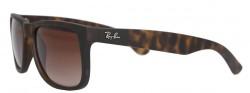 Pánske slnečné okuliare Ray-Ban C3641