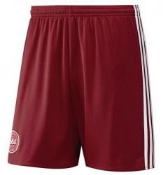 Pánske šortky Adidas D0671
