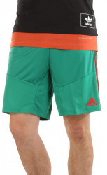 Pánske športové kraťasy Adidas A0791
