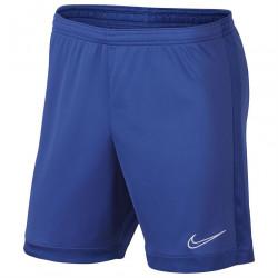 Pánske športové kraťasy Nike H9723