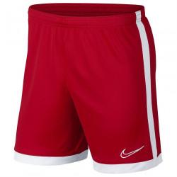 Pánske športové kraťasy Nike H9763