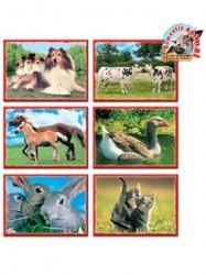 Skladacie obrázkové kocky 12 ks domáce zvieratká zelená